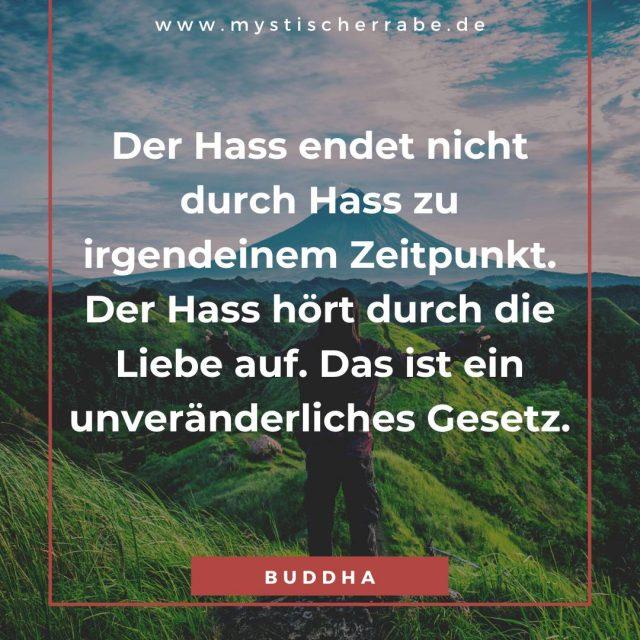100 Inspirierende Buddha Zitate