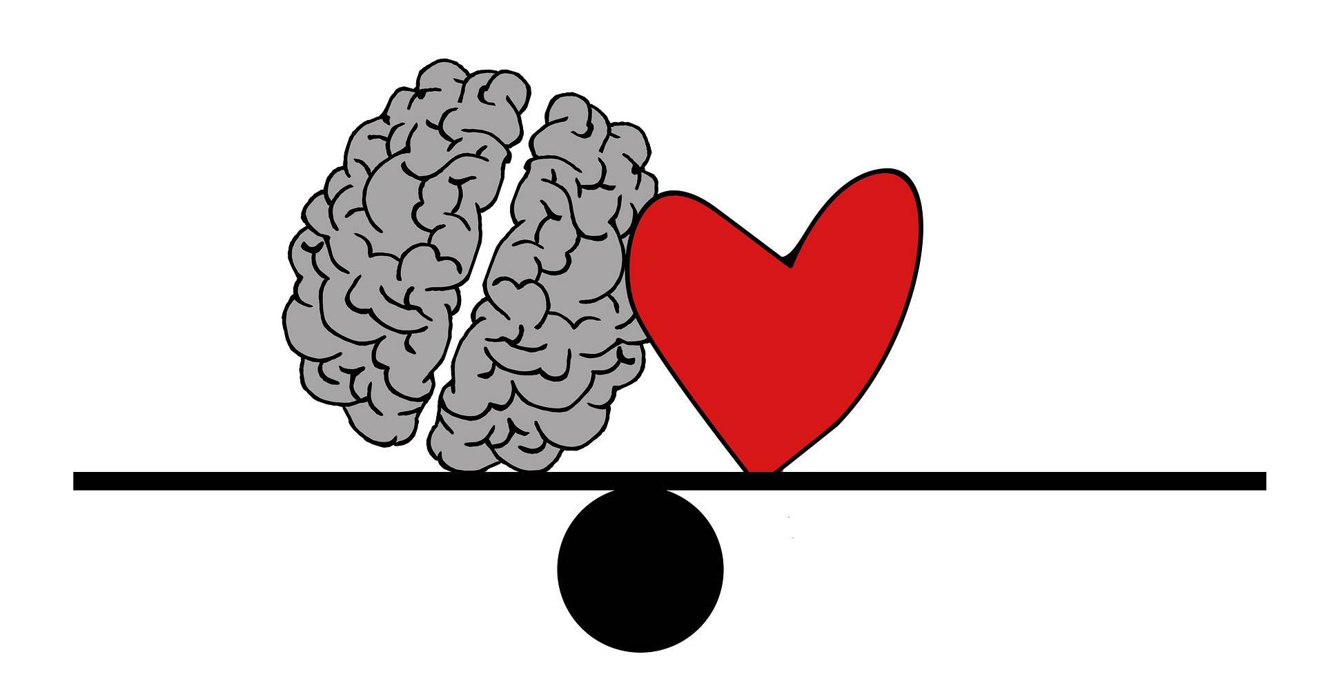 Ein Kopfmensch oder Herzmensch, welcher bist du?
