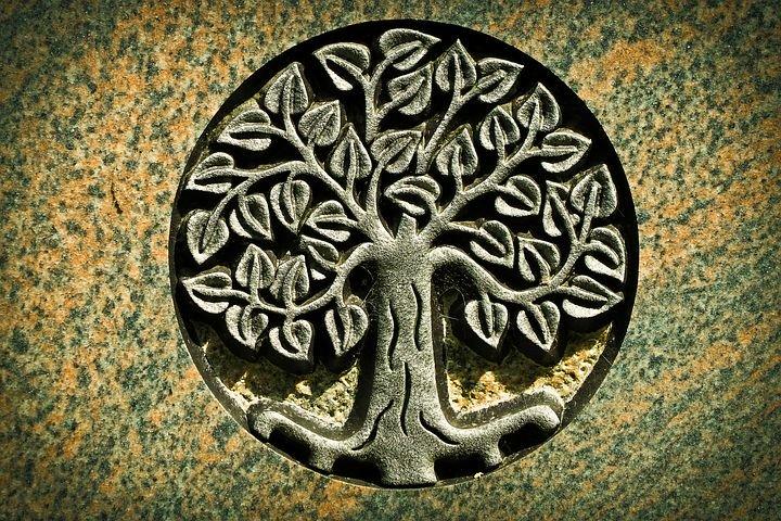 Lebensbaum: Bedeutung und Geschichte des uralten Symbols