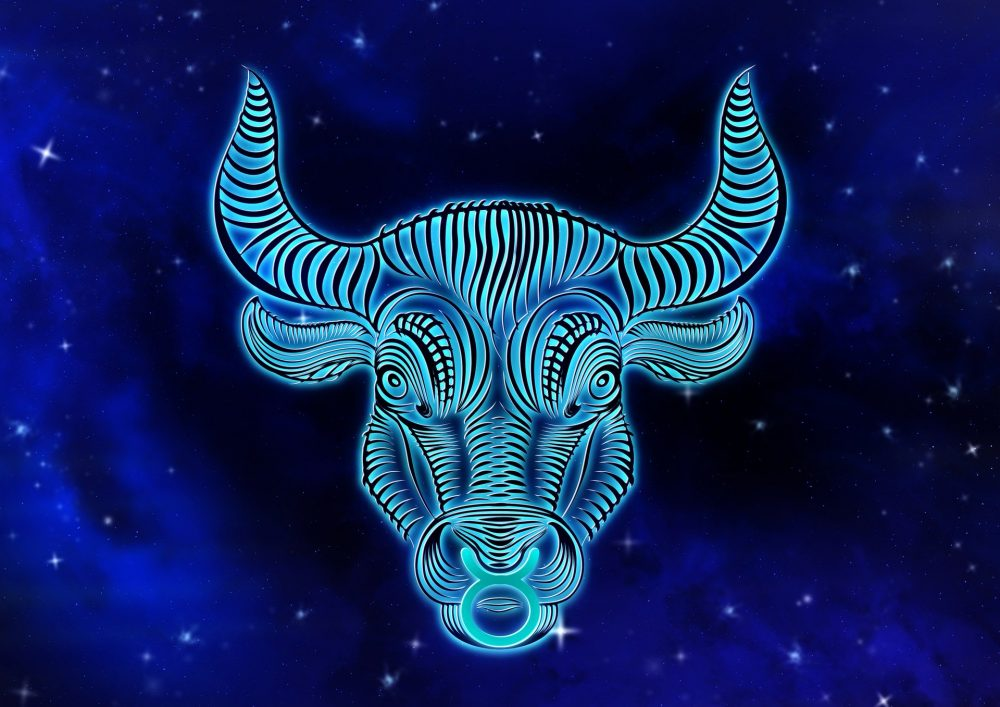Mann kennenlernphase stier Einen Stier