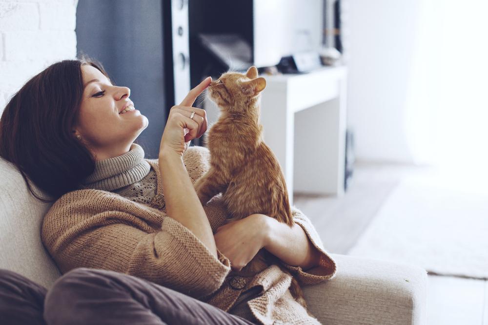 12 Gründe, warum Katzenliebhaberin die besten Ehefrauen sind