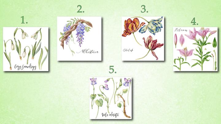Der Code der Göttin Flora: Wählen Sie eine Blume und erhalten Sie eine Botschaft