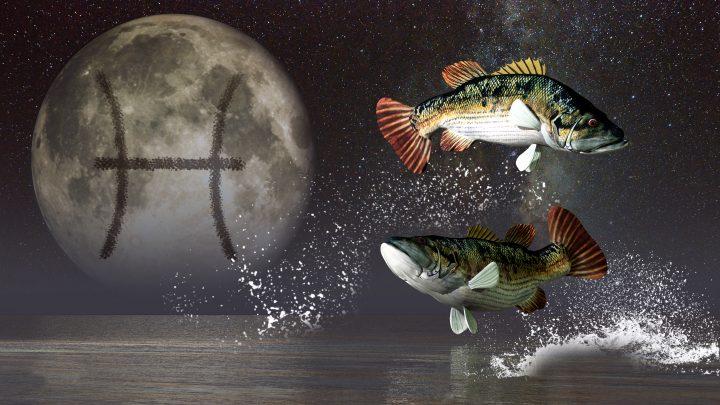 Mondzeichen Fische: Derjenige, der in einem Meer von Emotionen lebt