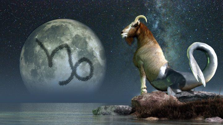 Mondzeichen Steinbock: Derjenige, der sich mit Rationalität schützt