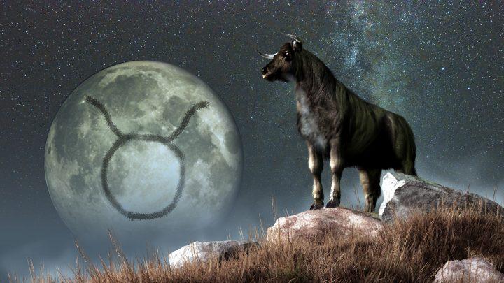 Mondzeichen Stier: Derjenige, der noch fähig ist, wahrhaftig zu lieben