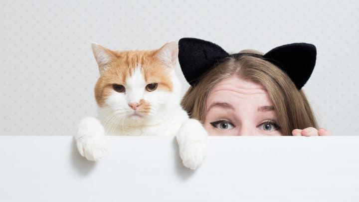 Wenn diese Sachen auf Sie zutreffen, sind Sie eigentlich eine Katze